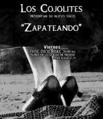 Los Cojolites presentan Zapateando en el Museo de la Ciudad de Mexico, diciembre 2014